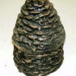 Split Pine Cone Crackling Ash