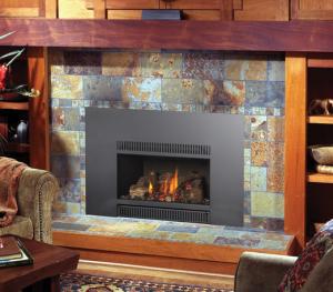 Fireplace Xtrordinair 31 DVI