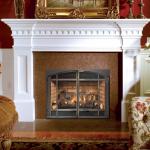 Fireplace Xtrordinair 564 High Output Dancing Fyre
